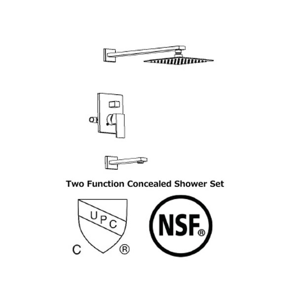 Two Function Concealed Shower Set